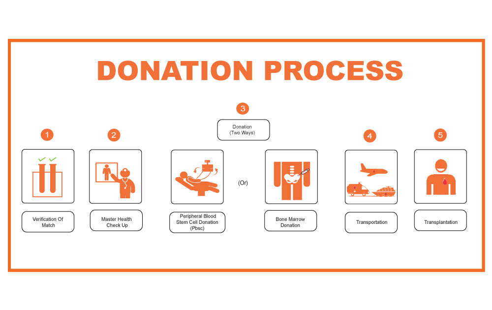 How Often Can You Donate Bone Marrow/Blood Stem Cells?