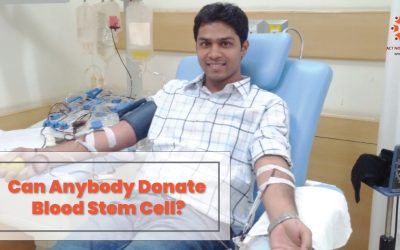 Can anybody Donate Blood Stem Cell? What are the limitations and Standards?